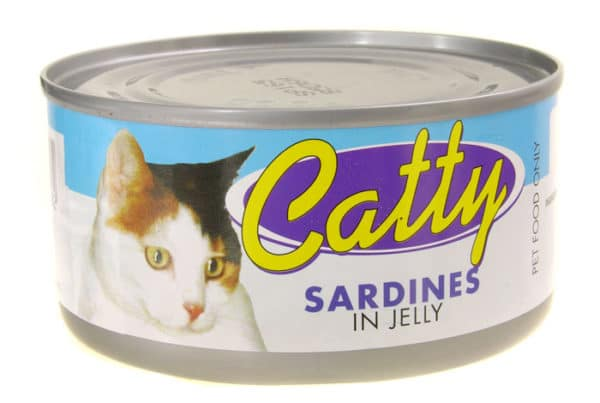 catty pet food in jelly with sardines